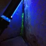 Ergebnis aus der Farbstoffprobe im Pumpenschacht
