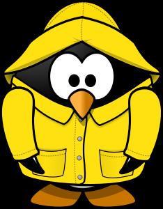 rain-penguin